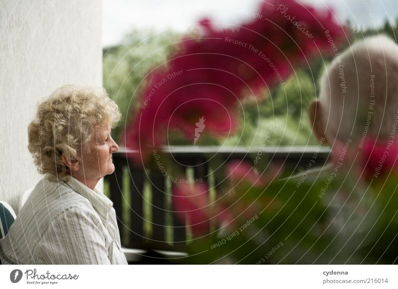 Human being Woman Man Old Flower Calm Life Senior citizen Dream Friendship Time Together Contentment Meditative Transience Observe