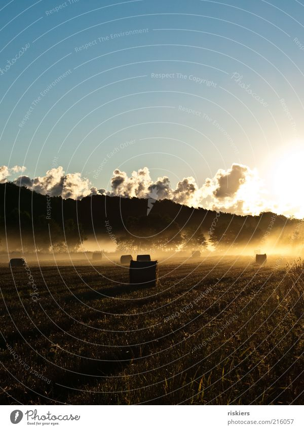 Nature Summer Calm Clouds Far-off places Autumn Dream Landscape Moody Power Field Fog Environment Horizon Earth Hope