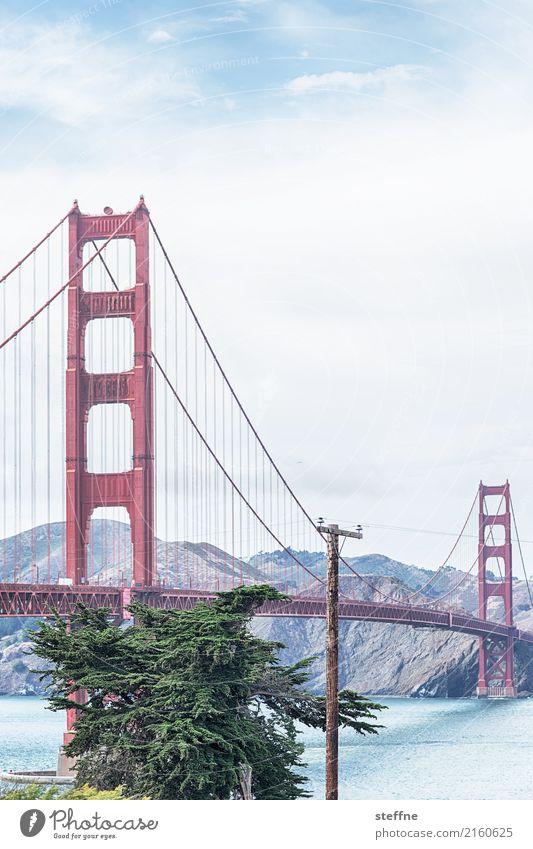 Around the World: San Francisco Travel photography Tourism Vacation & Travel Round trip around the world steffne Golden Gate Bridge Landmark Card