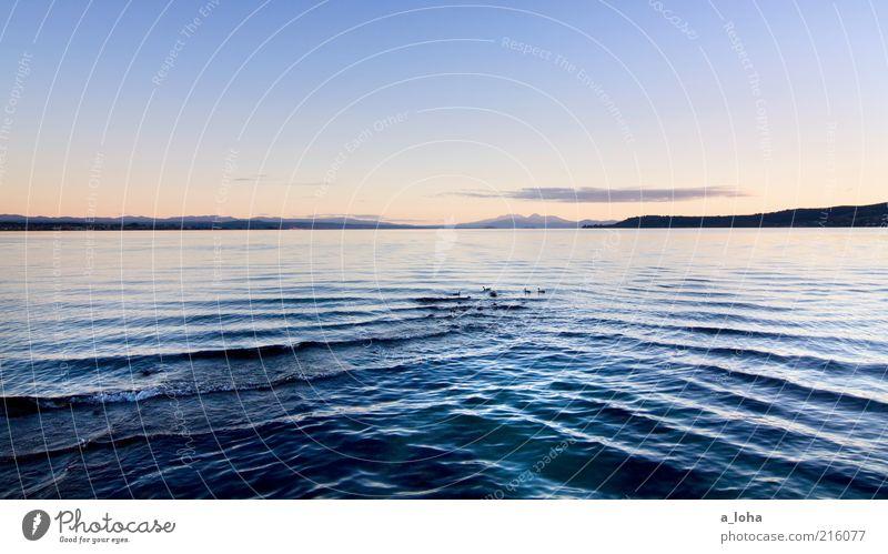 Nature Water Sky Blue Far-off places Dark Cold Mountain Lake Landscape Contentment Coast Waves Wet Horizon Rock