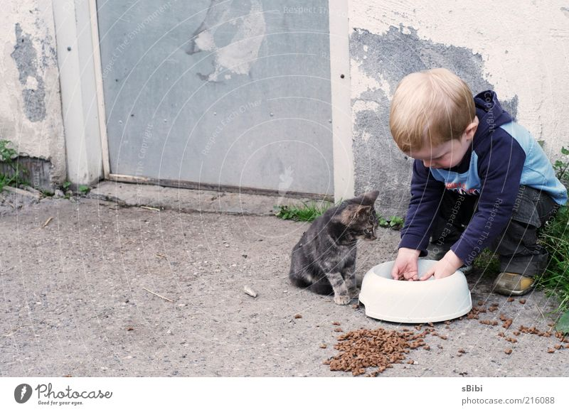 Child Human being Animal Wall (building) Playing Boy (child) Wall (barrier) Moody Cat Friendship Contentment Baby animal Infancy Together Blonde Door
