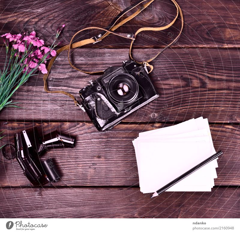 Old vintage film camera in a leather case Vacation & Travel Camera Flower Leather Paper Bouquet Wood Retro Dianthus caryophyllus Card Pencil Photography