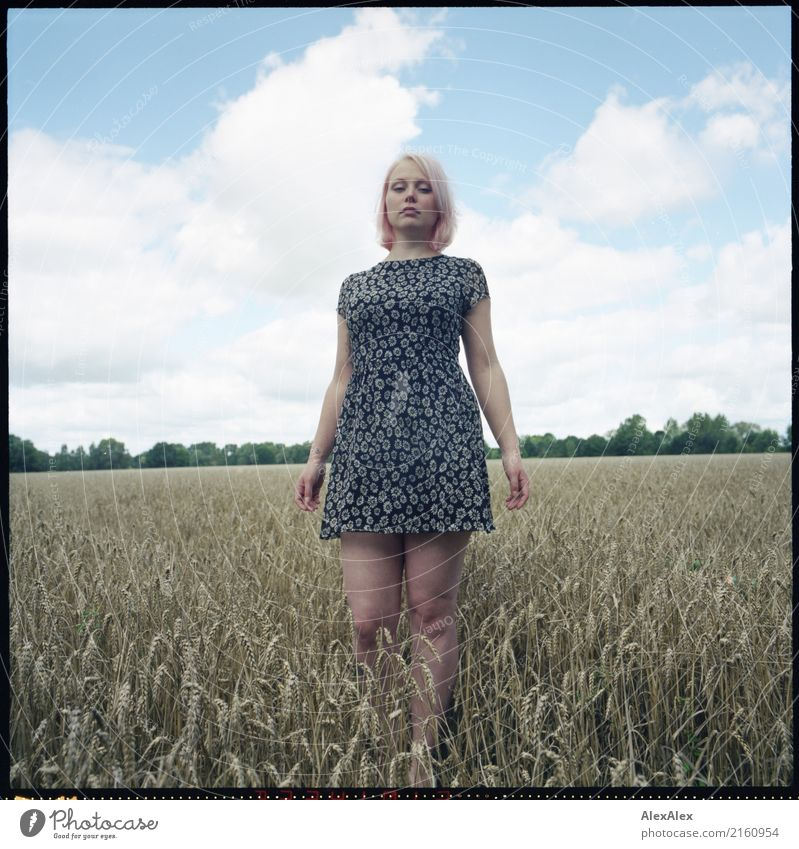 analogue portrait of a young woman standing in a field in a summer dress Grain already Life Well-being Trip Young woman Youth (Young adults) 18 - 30 years