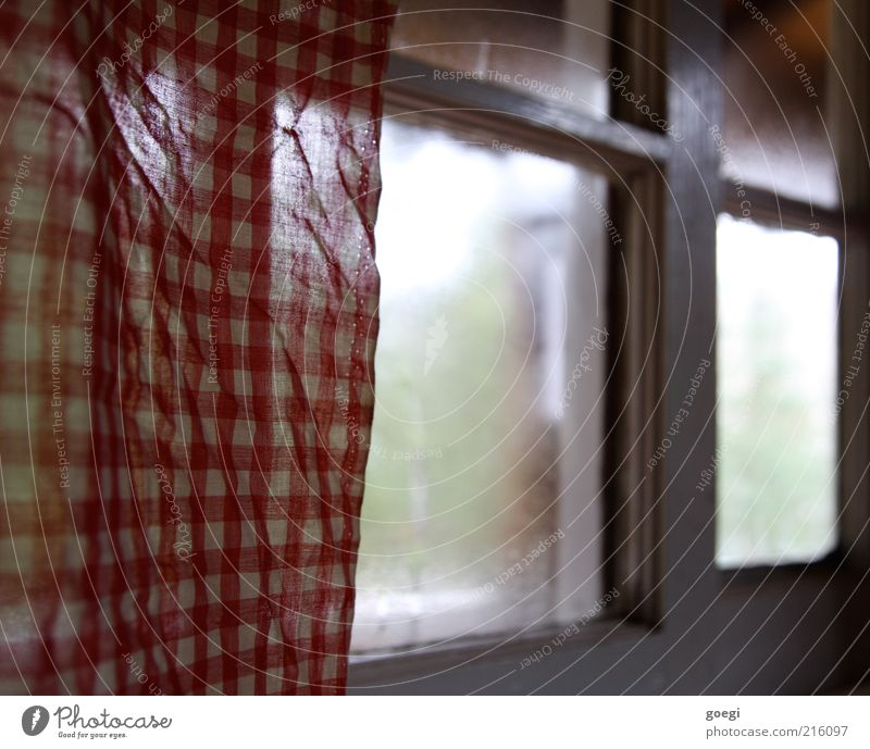 White Green Red Calm Cold Window Glass Protection Warm-heartedness Cloth Drape Safety (feeling of) Curtain Checkered Window frame Cloth pattern
