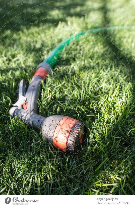 Garden hose and sprayer on green meadow Nature Summer Green Hand Environment Grass Wet Lawn Tool Gardening Hose Tube Gardener Sprinkle Irrigation