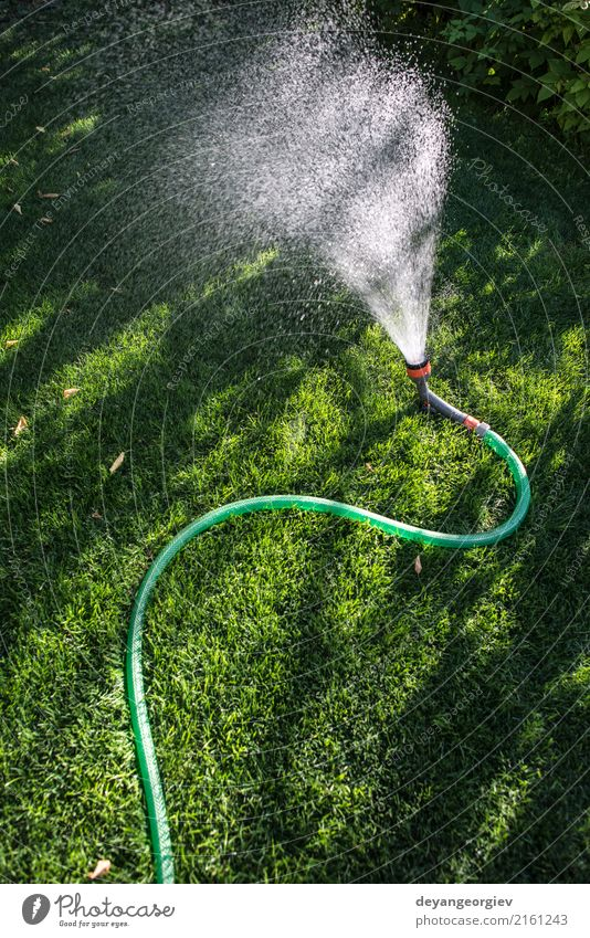 Garden hose and sprayer on green meadow Summer Gardening Tool Hand Environment Nature Grass Tube Wet Green Hose water sprinkler watering Lawn Irrigation Nozzle