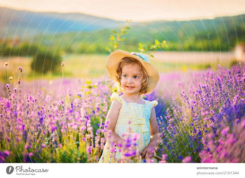 Girl in the lavender Human being 1 3 - 8 years Child Infancy Sky Summer Beautiful weather Lavender Field Mountain Lavender field Dress Hat Blonde Curl Smiling