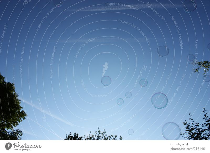 Blue Glittering Circle Round Sphere Easy Upward Beautiful weather Soap bubble Ease Go up Blue sky Weightlessness Spherical Skyward