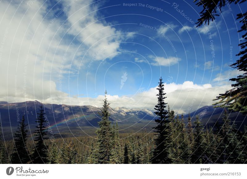 weather change Environment Nature Landscape Plant Sky Clouds Summer Weather Beautiful weather Rain Tree Forest Mountain Rocky Mountains Peak Snowcapped peak