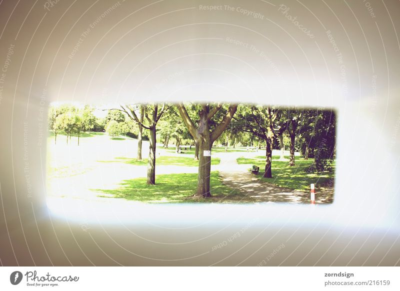 Out of the box I Park Discover Green Tunnel vision Frame Vignetting Box Colour photo Exterior shot Cardboard Deserted Summer Garden path Lanes & trails Shadow
