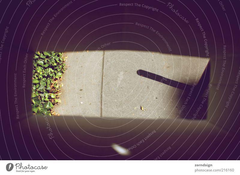 Lanes & trails Concrete Asphalt Sidewalk Frame Shadow Vignetting Wayside Cardboard box Tunnel vision