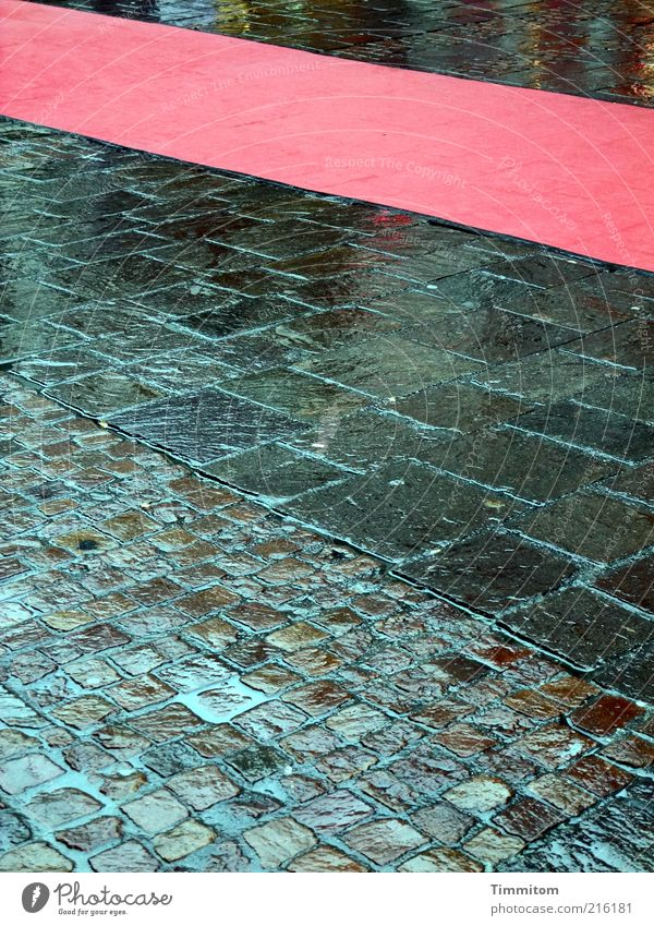 Red Carpet Weather Bad weather Rain Pedestrian precinct Street Stone Red carpet Going Looking Esthetic Wet Joie de vivre (Vitality) Expectation Luxury