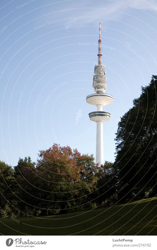 Hamburgo al aire Television tower Tall Autumn Autumn leaves Tree Maple tree Twigs and branches ski jump park Autumnal colours Early fall Autumnal landscape