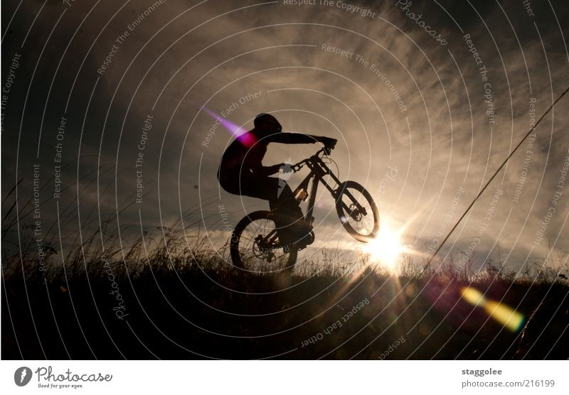 mountain bike ski Sports Cycling Driving Mountain biking Mountain bike Subdued colour Exterior shot Twilight Back-light Meadow Grass Sky Clouds Sun Sunset