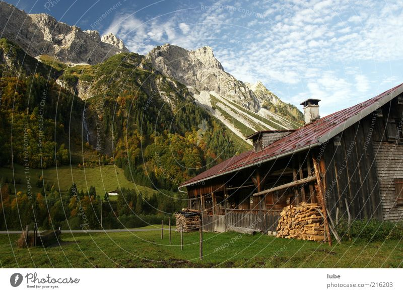 Wood in front of the hut Vacation & Travel Tourism Mountain Dream house Nature Landscape Beautiful weather Rock Alps Peak Hut Living or residing