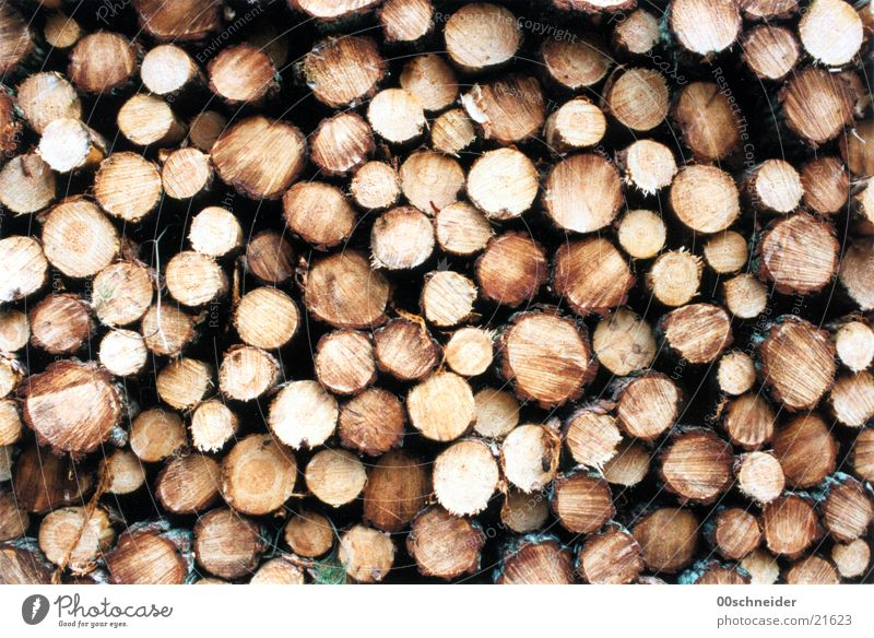 stack of wood Wood Stack of wood Brown Pine pile Storage