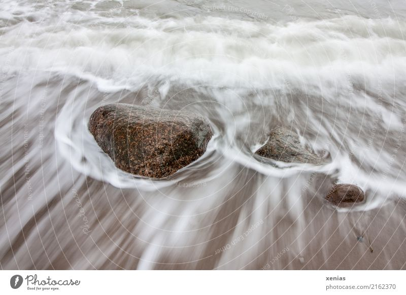 White Ocean Beach Cold Coast Tourism Stone Brown Rock Waves Baltic Sea North Sea Flow Surf Maritime