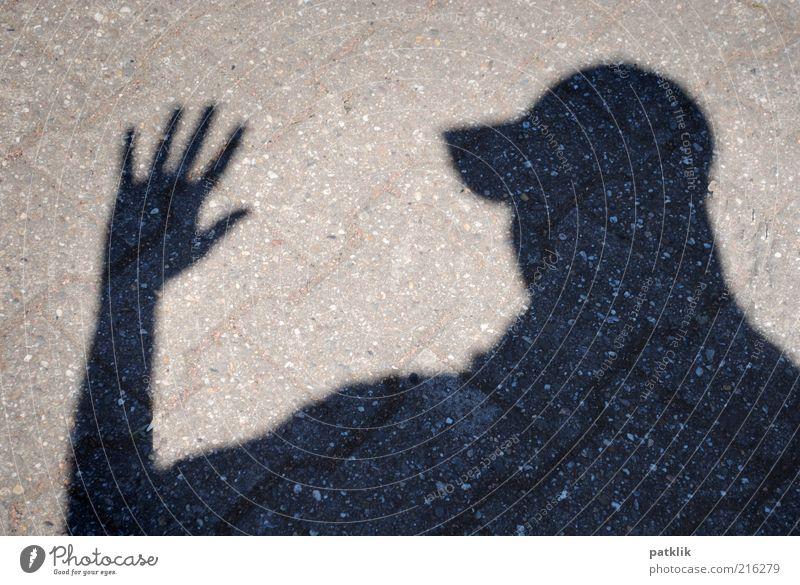 The shadow photographer Masculine Head Hand Fingers 18 - 30 years Youth (Young adults) Adults Black Silhouette Brick Cap Clue Shadow Welcome Goodbye Hi!