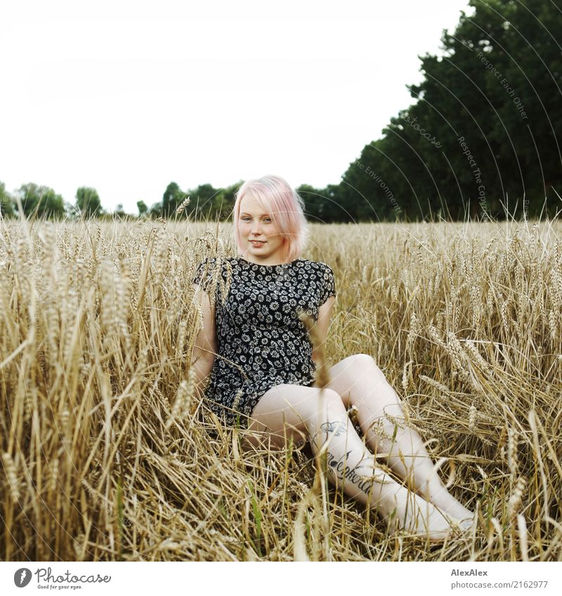 Portrait of a young, tattooed woman sitting barefoot in a summer dress in a field Grain luck already Well-being Trip Young woman Youth (Young adults) Face Legs