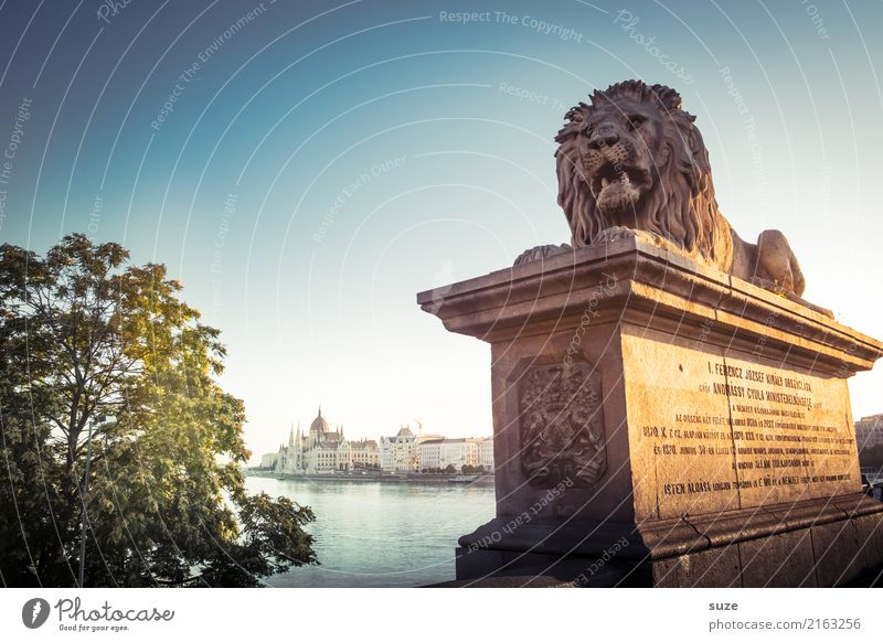 howler Tourism Sightseeing City trip Art Work of art Culture Animal Tree River Capital city Bridge Manmade structures Architecture Monument Stone Old Historic