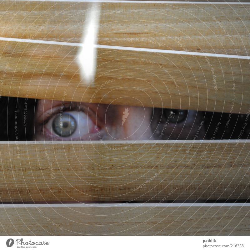 Woman Human being Green Eyes Feminine Fear Glittering Observe Curiosity Hide Panic Interest Horror Partially visible Section of image Hiding place