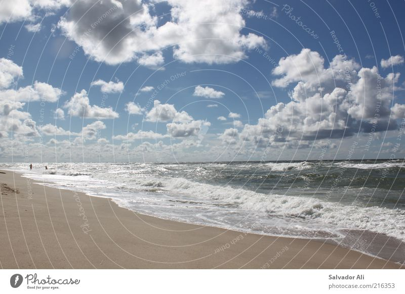 Nature Water Sky Ocean Blue Summer Beach Clouds Far-off places Cold Freedom Air Waves Wind Horizon