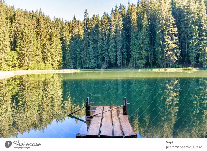 Forest lake in the mountains with blue water Sky Nature Vacation & Travel Plant Blue Summer Beautiful Green Water Sun Tree Landscape Relaxation Beach Mountain