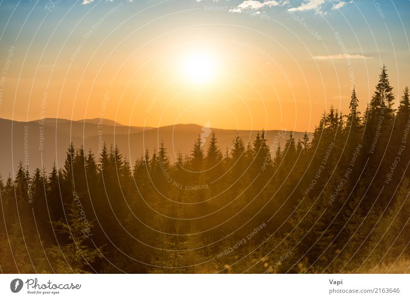 Sunset in the mountains with forest Beautiful Vacation & Travel Adventure Summer Mountain Environment Nature Landscape Sky Clouds Horizon Sunrise Sunlight