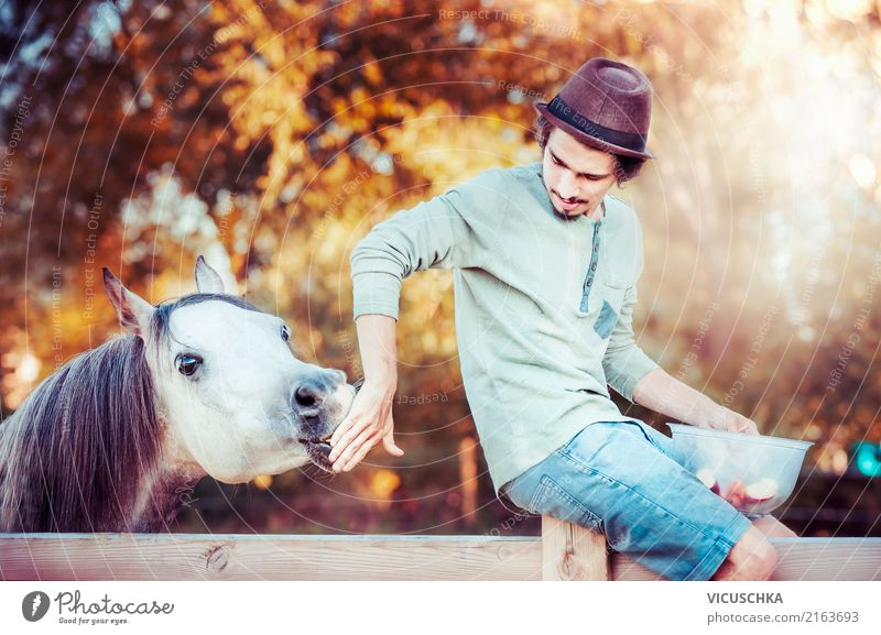 Young man with horse Masculine Youth (Young adults) Animal Horse Design Leisure and hobbies Joy Man Boy (child) Barn Nature Stable Autumn Colour photo