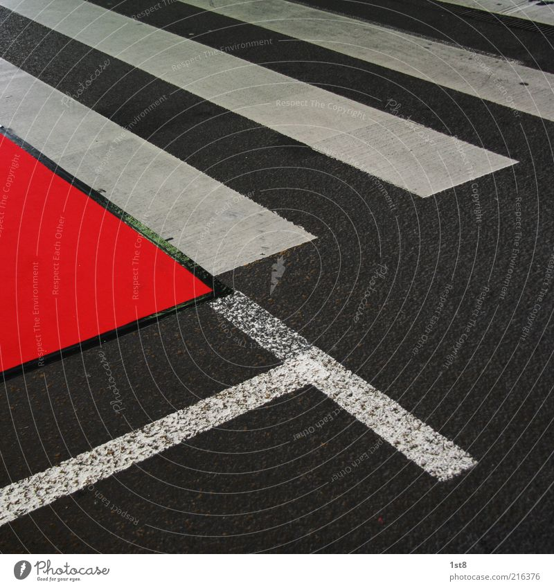 overdressed Transport Traffic infrastructure Street Lanes & trails Esthetic Exceptional Zebra crossing Lane markings Red carpet Adhesive tape Seamless