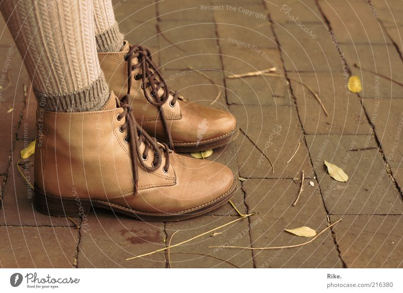 Stayed on the ground. Style Human being Feminine Feet 1 Autumn Leaf Tights Leather Footwear Stand Elegant Hip & trendy Beautiful Natural Brown Self-confident