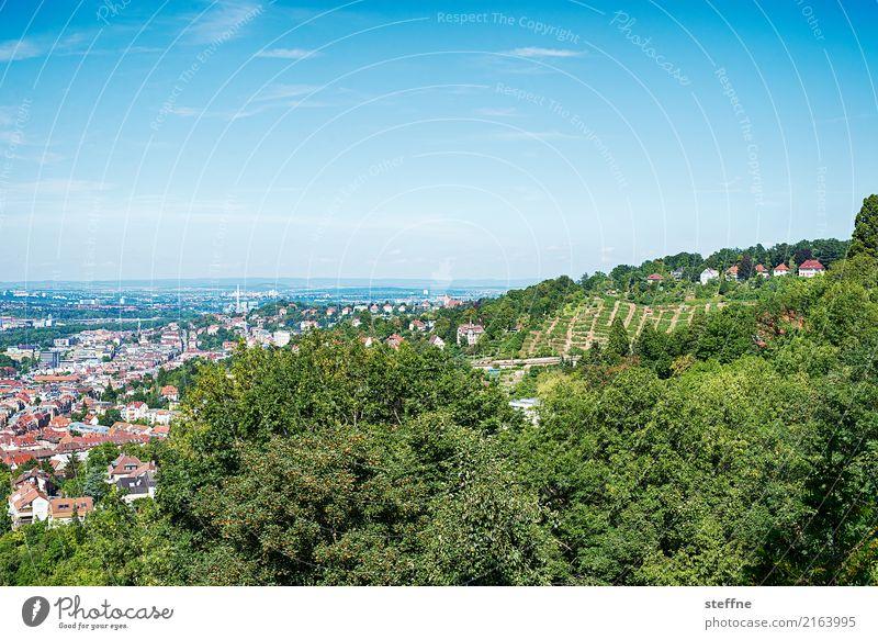 Around the World: Stuttgart Travel photography Tourism Vacation & Travel Round trip around the world steffne Vantage point Hill Vineyard