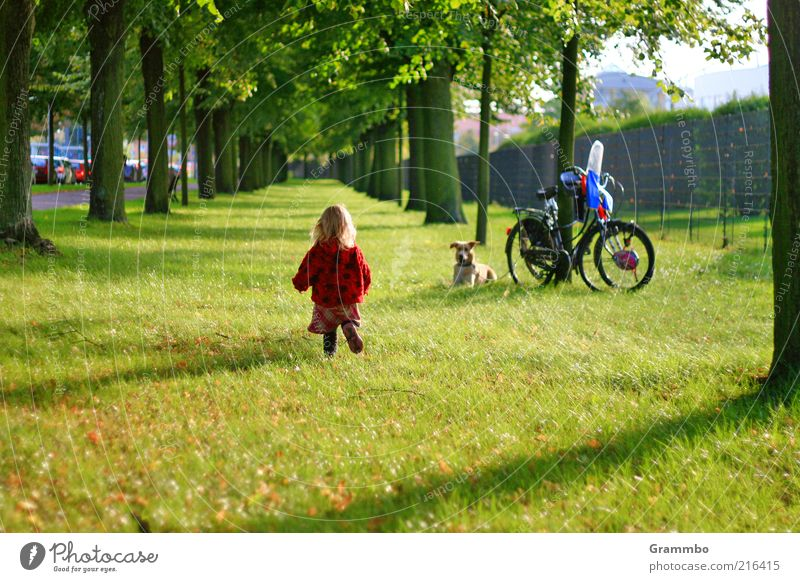 Human being Dog Tree Joy Animal Meadow Grass Infancy Going Bicycle Walking Toddler Child Pet Avenue Reunion