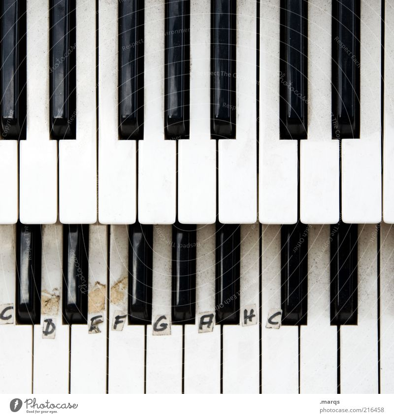 scale Lifestyle Entertainment Music Study Culture Piano Keyboard Sign Characters Play piano Keyboard instrument Classical Concentrate Compose Tone Organ