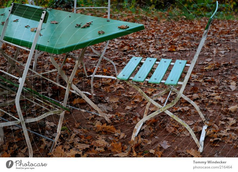 Vacation & Travel Leaf Loneliness Autumn Garden Table Closed Tourism Chair Change Gastronomy Idyll Restaurant Furniture Decline Past