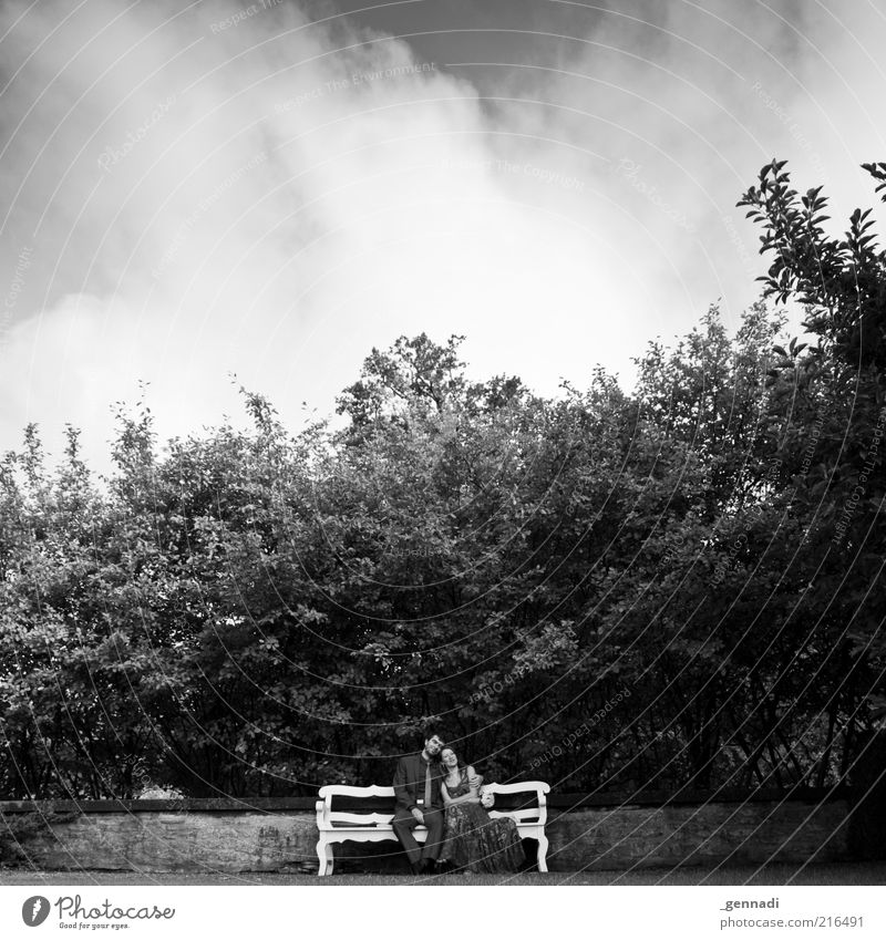 Young Happiness Human being Masculine Couple Partner Life 2 Clothing Dress Suit Love Sit Embrace Happy Beautiful Emotions Betrothal Bench Clouds in the sky