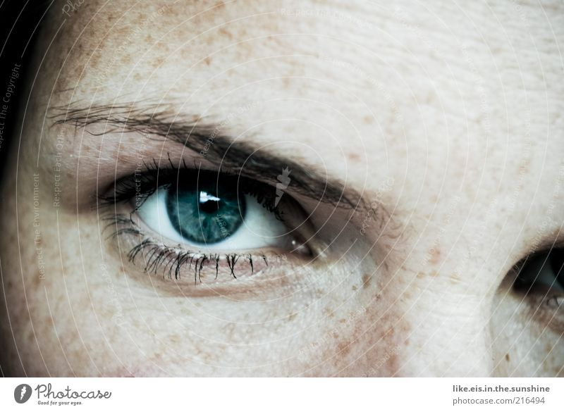 Human being Woman Youth (Young adults) Blue Face Adults Eyes Feminine Glittering Skin Masculine Young woman Illuminate 18 - 30 years Observe Freckles