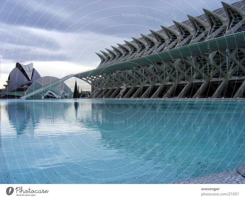 Museum Valencia 2 High-tech Large Lake Pond Swimming pool Spain Building IMAX cinema Cinema Reflection Clouds Gray Architecture Modern Basin Blue Sky Monument