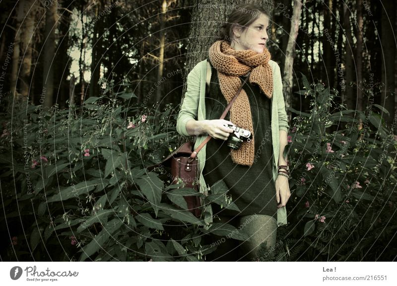 forest fairy Camera Feminine Young woman Youth (Young adults) 1 Human being Autumn Forest Dress Tights Scarf Bag Brunette Looking Stand Retro Calm Serene