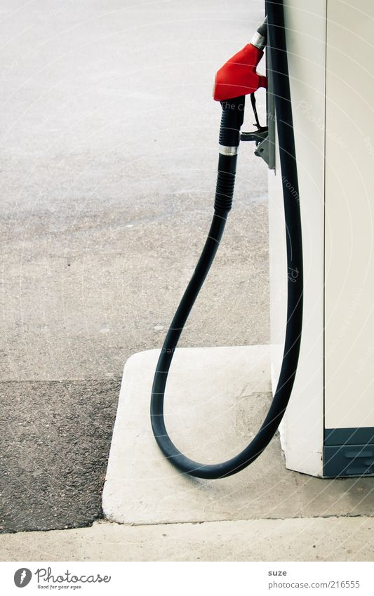 fuel stop Services Environment Gasoline Refuel Petrol pump Petrol station Diesel Bio-diesel Natural gas Hose Expensive Colour photo Subdued colour Exterior shot