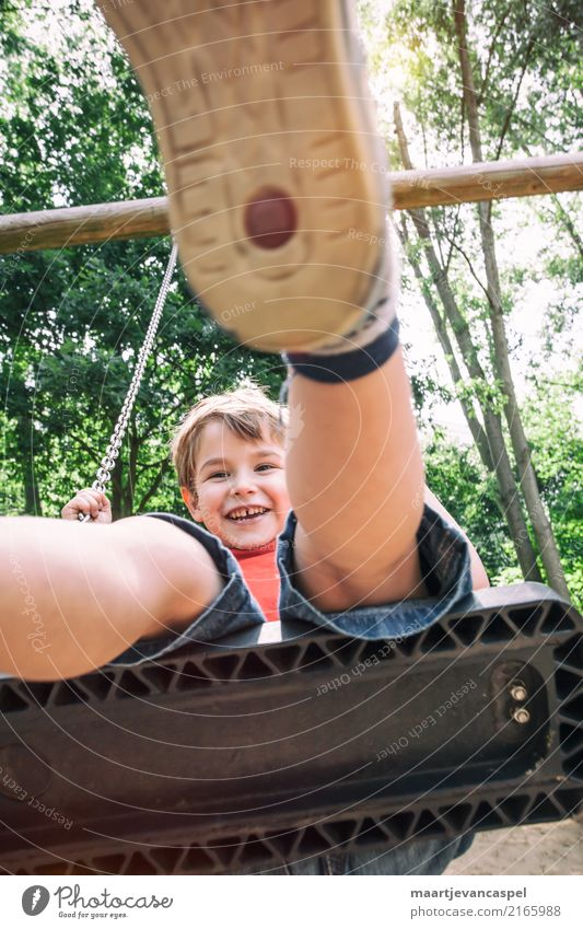 Little boy on a swing in the park Leisure and hobbies Playing To swing Human being Masculine Child Boy (child) Infancy Life 1 3 - 8 years Summer Park Blonde