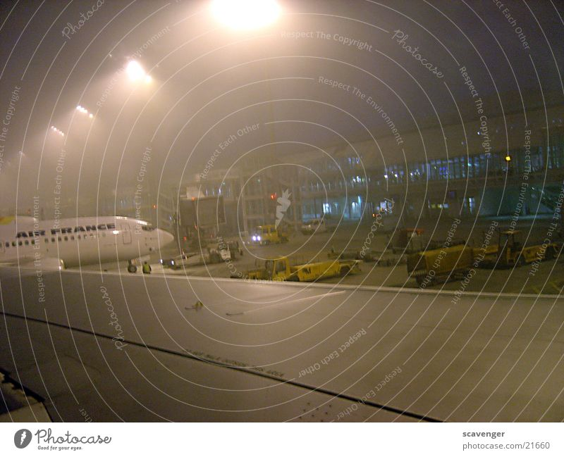 Building Airplane Fog Beginning Modern Aviation Technology Industrial Photography Munich Wing Airport Airplane landing Tails Floodlight Load Unload