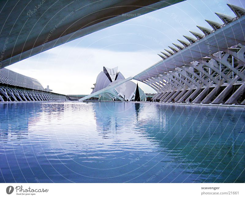 Museum Valencia High-tech Large Lake Pond Swimming pool Spain Building IMAX cinema Cinema Reflection Architecture Modern Basin Blue Sky Monument Prongs Stone