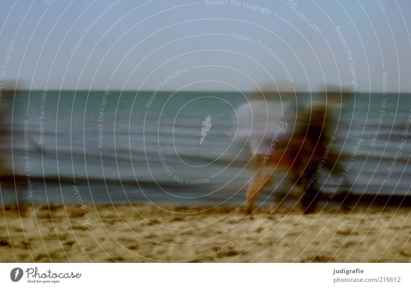 beach movement Vacation & Travel Tourism Summer Beach Ocean Human being Group Water Sky Coast Baltic Sea Movement Relaxation Going Moody Attachment Together