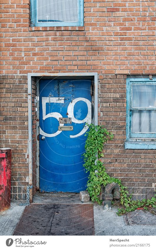 Old Blue House (Residential Structure) Architecture Wall (building) Wall (barrier) Exceptional Door Gloomy Authentic Digits and numbers Trashy Mailbox