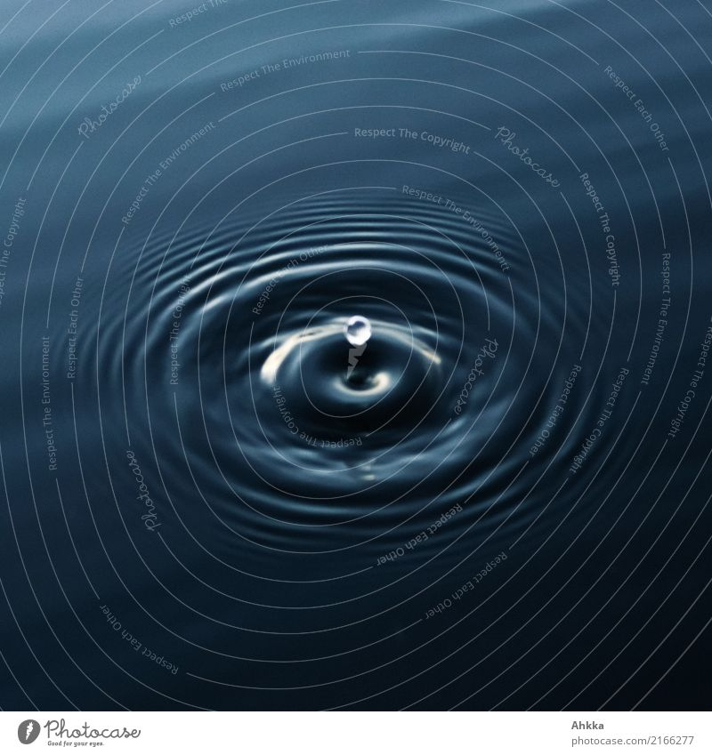 Round water drop jumps on dark water surface Health care Wellness Harmonious Well-being Senses Relaxation Calm Meditation Spa Study Academic studies