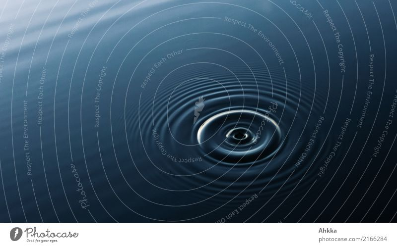 Harmonious circles of a drop in water Personal hygiene Health care Wellness Well-being Senses Relaxation Calm Meditation Spa Elements Water Circle Movement