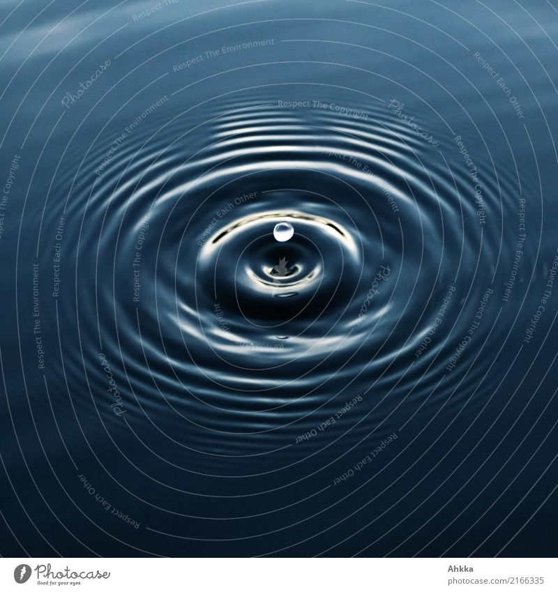 Water harmony, water drops and concentric circles Harmonious Well-being Contentment Senses Relaxation Calm Meditation Elements Drops of water To fall Flying
