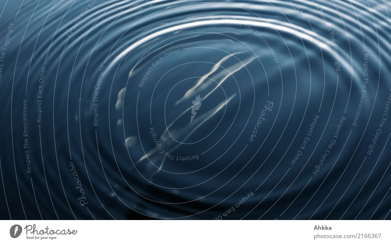 Concentric circles in water Harmonious Well-being Contentment Calm Elements Water Glittering Infinity Blue Relaxation Peace Idea Stagnating Moody Divide