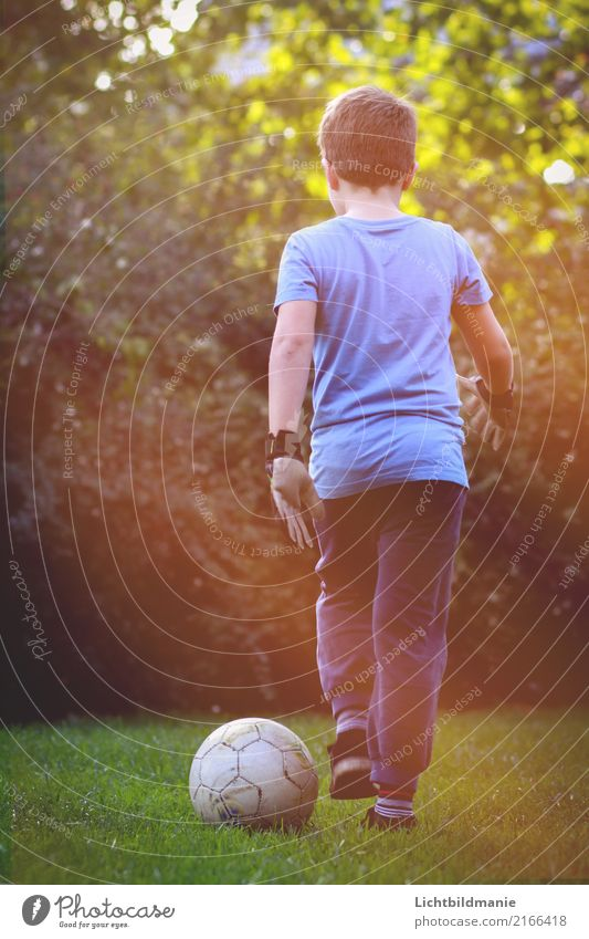 Football Passion Joy Leisure and hobbies Children's game Soccer Adventure Garden Children's room Sports Fitness Sports Training Ball sports Goalkeeper Success